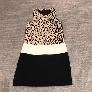 Trendy animal print Twiggy inspired shift dress